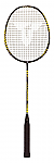 RACCHETTA PER BADMINTON TORRO ARROW SPEED